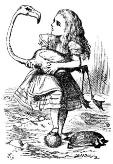 alice illustration.jpg
